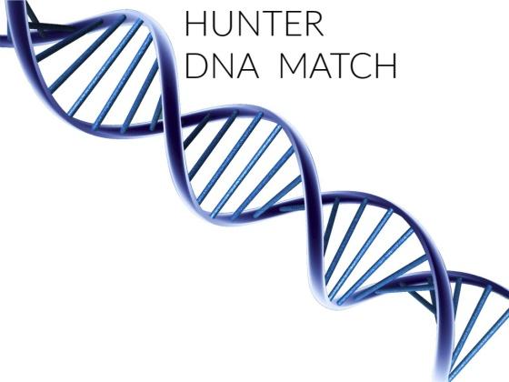 DNA MATCH (2)